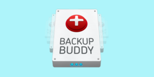 Backup Buddy helps with Secure Backups